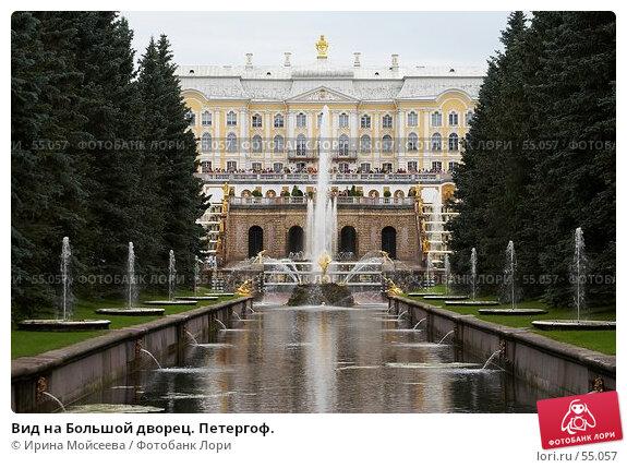 Купить «Вид на Большой дворец. Петергоф.», эксклюзивное фото № 55057, снято 25 июня 2006 г. (c) Ирина Мойсеева / Фотобанк Лори
