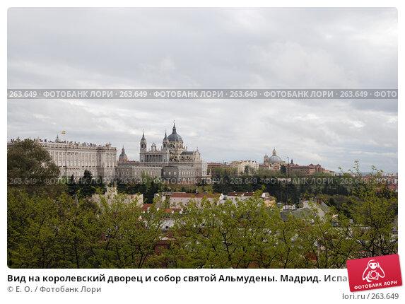 Вид на королевский дворец и собор святой Альмудены. Мадрид. Испания, фото № 263649, снято 19 апреля 2008 г. (c) Екатерина Овсянникова / Фотобанк Лори