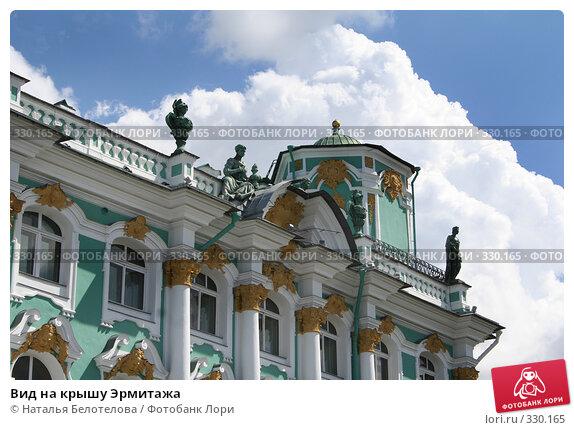 Вид на крышу Эрмитажа, фото № 330165, снято 21 июня 2008 г. (c) Наталья Белотелова / Фотобанк Лори