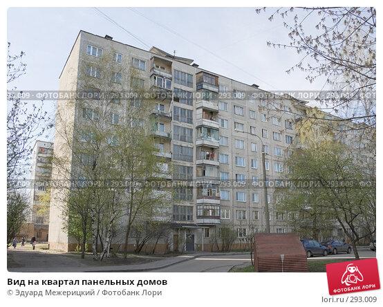 Вид на квартал панельных домов, фото № 293009, снято 23 апреля 2008 г. (c) Эдуард Межерицкий / Фотобанк Лори