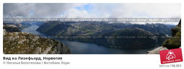 Вид на Лизефьорд, Норвегия, фото № 98901, снято 23 июня 2017 г. (c) Наталья Белотелова / Фотобанк Лори