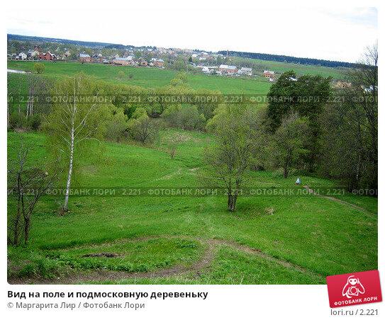 Вид на поле и подмосковную деревеньку, фото № 2221, снято 28 марта 2017 г. (c) Маргарита Лир / Фотобанк Лори
