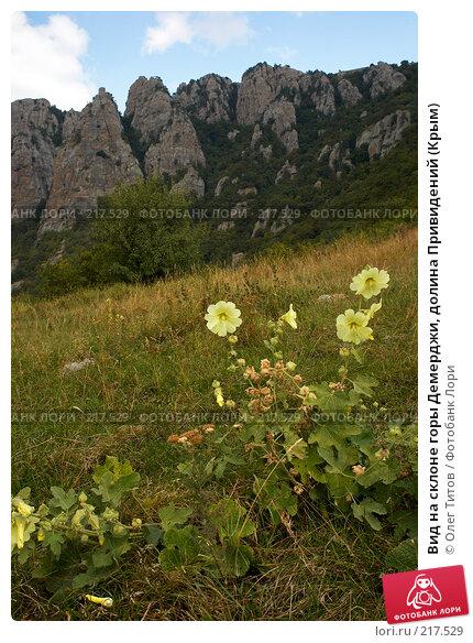 Вид на склоне горы Демерджи, долина Привидений (Крым), фото № 217529, снято 13 сентября 2006 г. (c) Олег Титов / Фотобанк Лори