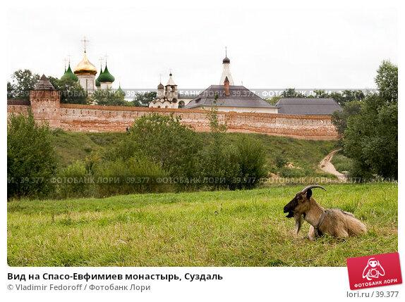 Вид на Спасо-Евфимиев монастырь, Суздаль, фото № 39377, снято 13 августа 2006 г. (c) Vladimir Fedoroff / Фотобанк Лори