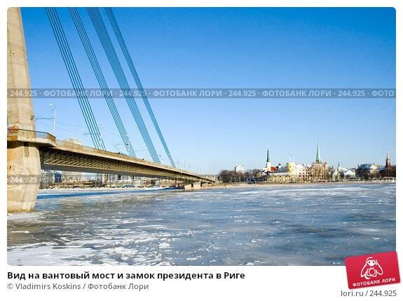 Купить «Вид на вантовый мост и замок президента в Риге», фото № 244925, снято 1 февраля 2007 г. (c) Vladimirs Koskins / Фотобанк Лори
