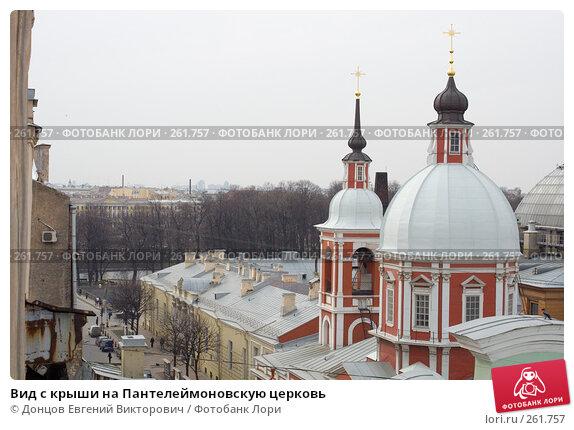 Вид с крыши на Пантелеймоновскую церковь, фото № 261757, снято 17 апреля 2008 г. (c) Донцов Евгений Викторович / Фотобанк Лори