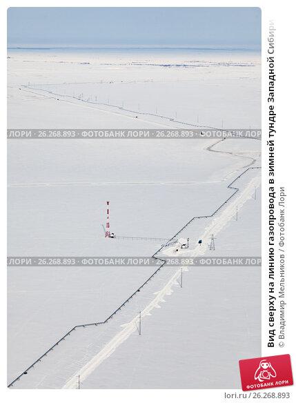 Вид сверху на линию газопровода в зимней тундре Западной Сибири, фото № 26268893, снято 29 марта 2017 г. (c) Владимир Мельников / Фотобанк Лори
