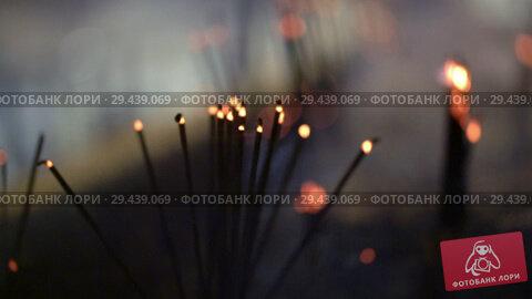 Купить «Video recording of smoldering aroma sticks in dark interior of buddhist temple», видеоролик № 29439069, снято 9 ноября 2018 г. (c) Andriy Bezuglov / Фотобанк Лори