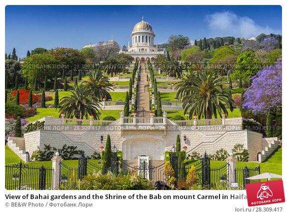 Купить «View of Bahai gardens and the Shrine of the Bab on mount Carmel in Haifa, Israel», фото № 28309417, снято 22 апреля 2018 г. (c) BE&W Photo / Фотобанк Лори