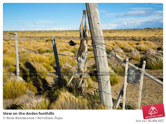 View on the Andes foothills (2017 год). Стоковое фото, фотограф Яков Филимонов / Фотобанк Лори