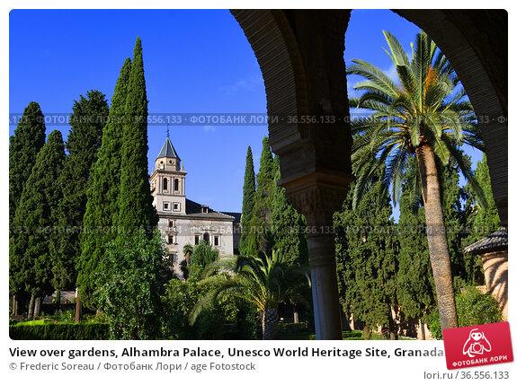 View over gardens, Alhambra Palace, Unesco World Heritage Site, Granada... Стоковое фото, фотограф Frederic Soreau / age Fotostock / Фотобанк Лори