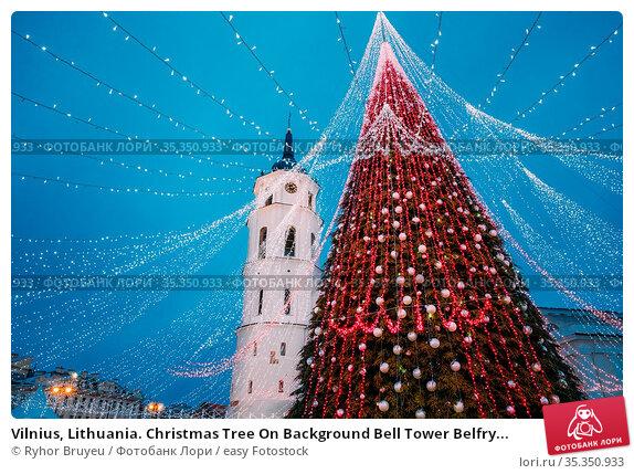 Vilnius, Lithuania. Christmas Tree On Background Bell Tower Belfry... Стоковое фото, фотограф Ryhor Bruyeu / easy Fotostock / Фотобанк Лори