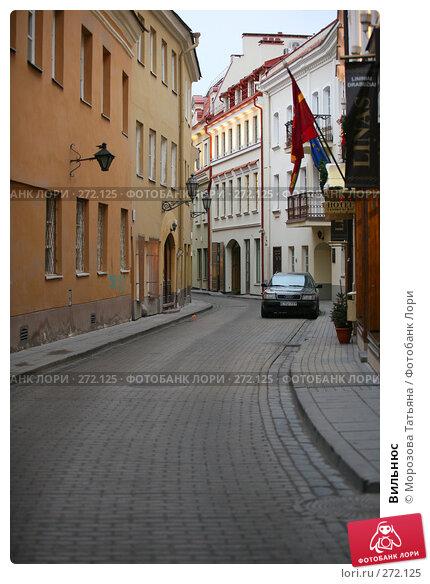 Вильнюс, фото № 272125, снято 30 декабря 2006 г. (c) Морозова Татьяна / Фотобанк Лори