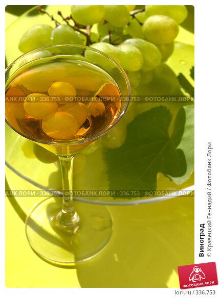 Виноград, фото № 336753, снято 6 сентября 2004 г. (c) Кравецкий Геннадий / Фотобанк Лори