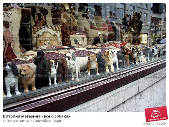Витрина магазина - все о собаках, фото № 114205, снято 30 сентября 2007 г. (c) Ларина Татьяна / Фотобанк Лори