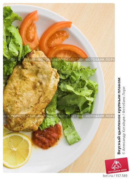 Вкусный цыпленок крупным планом, фото № 157589, снято 8 марта 2007 г. (c) Александр Катайцев / Фотобанк Лори