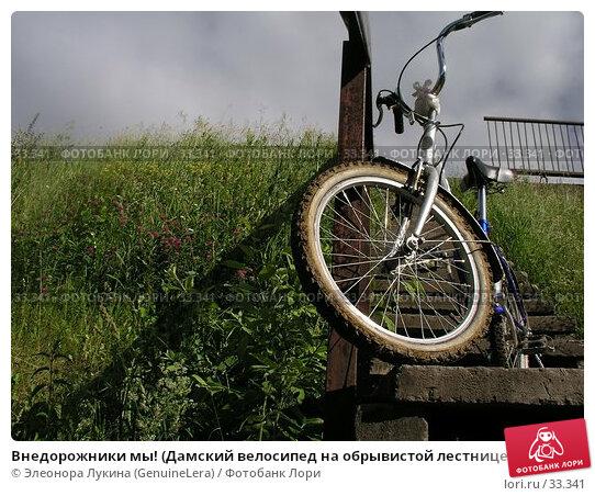 Внедорожники мы! (Дамский велосипед на обрывистой лестнице на косогоре, заросшем травами), фото № 33341, снято 25 июля 2017 г. (c) Элеонора Лукина (GenuineLera) / Фотобанк Лори
