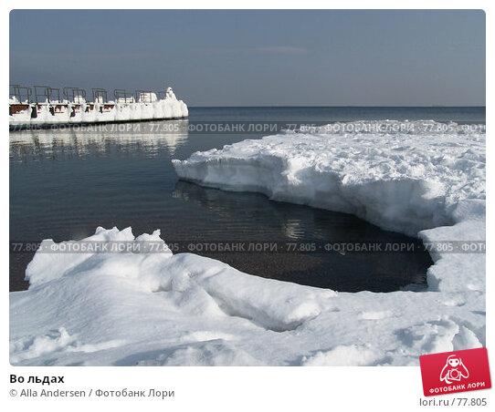 Во льдах, фото № 77805, снято 12 февраля 2006 г. (c) Alla Andersen / Фотобанк Лори