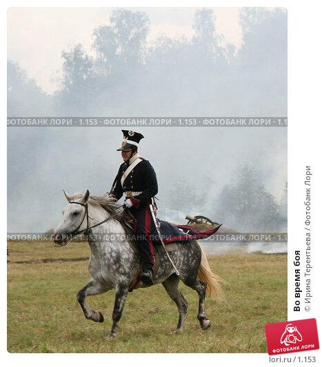 Во время боя, эксклюзивное фото № 1153, снято 4 сентября 2005 г. (c) Ирина Терентьева / Фотобанк Лори