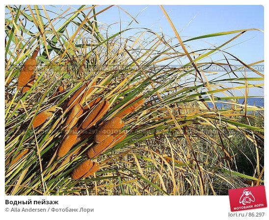 Водный пейзаж, фото № 86297, снято 1 января 2005 г. (c) Alla Andersen / Фотобанк Лори