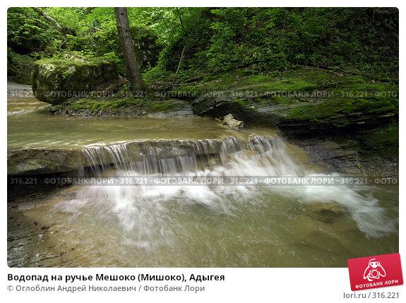 Водопад на ручье Мешоко (Мишоко), Адыгея, фото № 316221, снято 8 июня 2008 г. (c) Оглоблин Андрей Николаевич / Фотобанк Лори