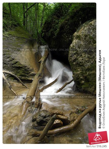 Водопад на ручье Мешоко (Мишоко), Адыгея, фото № 316245, снято 8 июня 2008 г. (c) Оглоблин Андрей Николаевич / Фотобанк Лори