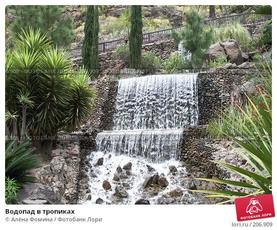 Водопад в тропиках, фото № 206909, снято 22 марта 2007 г. (c) Алёна Фомина / Фотобанк Лори