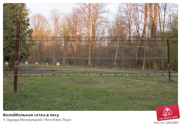 Волейбольная сетка в лесу, фото № 264869, снято 24 апреля 2008 г. (c) Эдуард Межерицкий / Фотобанк Лори