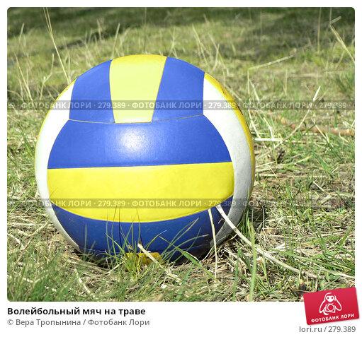 Волейбольный мяч на траве, фото № 279389, снято 26 сентября 2017 г. (c) Вера Тропынина / Фотобанк Лори