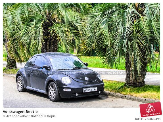 Купить «Volkswagen Beetle», фото № 8466493, снято 18 июля 2009 г. (c) Art Konovalov / Фотобанк Лори
