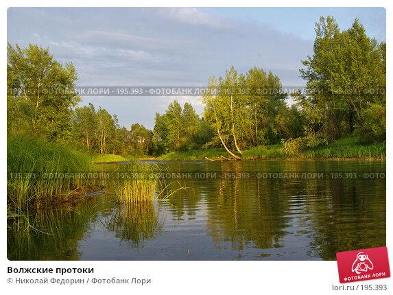 Волжские протоки, фото № 195393, снято 26 июля 2007 г. (c) Николай Федорин / Фотобанк Лори
