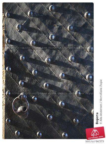Купить «Ворота», фото № 64573, снято 31 января 2007 г. (c) Alla Andersen / Фотобанк Лори