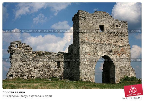 Ворота замка, фото № 118621, снято 26 августа 2007 г. (c) Сергей Бондарук / Фотобанк Лори