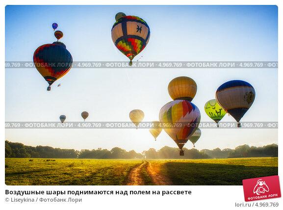 Воздушные шары поднимаются над полем на рассвете (2013 год). Редакционное фото, фотограф Liseykina / Фотобанк Лори