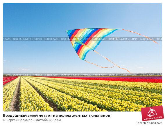 Купить «Воздушный змей летает на полем желтых тюльпанов», фото № 6881525, снято 19 апреля 2014 г. (c) Сергей Новиков / Фотобанк Лори