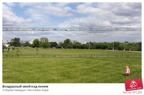 Воздушный змей над полем, фото № 311221, снято 31 мая 2008 г. (c) Юрий Синицын / Фотобанк Лори