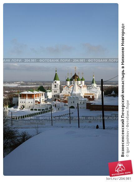 Купить «Вознесенсенский Печерский монастырь в Нижнем Новгороде», фото № 204981, снято 15 февраля 2008 г. (c) Igor Lijashkov / Фотобанк Лори