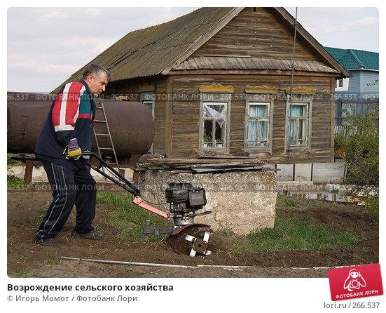 Возрождение сельского хозяйства, фото № 266537, снято 29 апреля 2008 г. (c) Игорь Момот / Фотобанк Лори