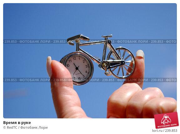 Купить «Время в руке», фото № 239853, снято 29 марта 2008 г. (c) RedTC / Фотобанк Лори
