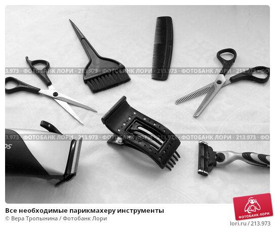 Все необходимые парикмахеру инструменты, фото № 213973, снято 16 января 2017 г. (c) Вера Тропынина / Фотобанк Лори