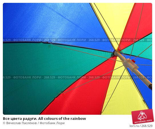 Все цвета радуги. All colours of the rainbow, фото № 268529, снято 24 августа 2007 г. (c) Вячеслав Паслёнов / Фотобанк Лори