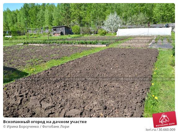 вскопанный участок земли в огороде