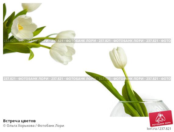 Купить «Встреча цветов», фото № 237821, снято 8 марта 2008 г. (c) Ольга Хорькова / Фотобанк Лори