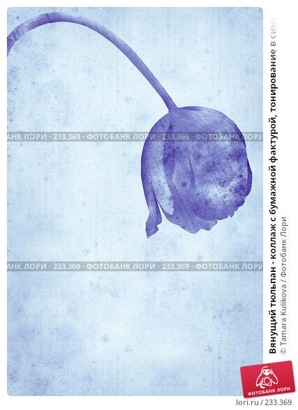 Вянущий тюльпан - коллаж с бумажной фактурой, тонирование в синей гамме, иллюстрация № 233369 (c) Tamara Kulikova / Фотобанк Лори