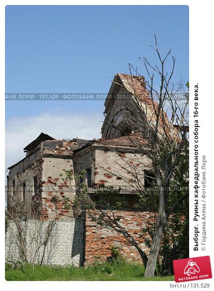 Выборг.  Руины кафедрального собора 16-го века., фото № 131529, снято 30 июня 2007 г. (c) Гордина Алёна / Фотобанк Лори
