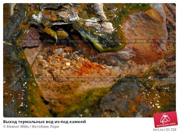 Выход термальных вод из-под камней, фото № 31729, снято 7 января 2007 г. (c) Eleanor Wilks / Фотобанк Лори