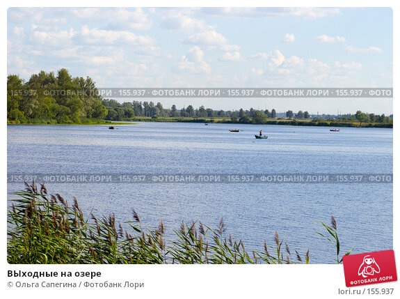 ВЫходные на озере, фото № 155937, снято 17 июля 2007 г. (c) Ольга Сапегина / Фотобанк Лори