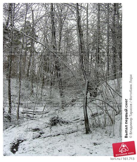 Купить «Выпал первый снег», фото № 161713, снято 7 апреля 2007 г. (c) Владимир Тарасов / Фотобанк Лори