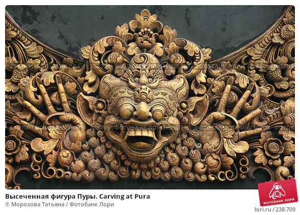 Высеченная фигура Пуры. Carving at Pura, фото № 238709, снято 22 февраля 2008 г. (c) Морозова Татьяна / Фотобанк Лори