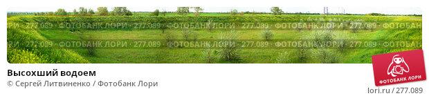 Высохший водоем, фото № 277089, снято 7 мая 2008 г. (c) Сергей Литвиненко / Фотобанк Лори